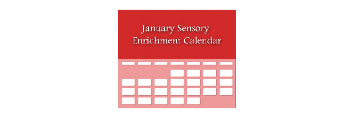 Archive of Dementia and Sensory Activity Calendars